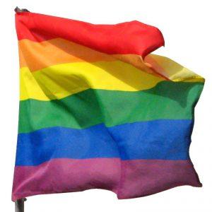 drapeau-homo-mpi