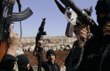 Qui va dialoguer avec Assad ?