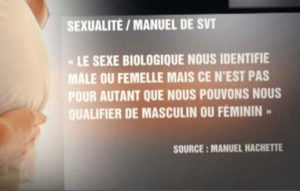 svt-theorie_du_genre-mpi