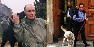 chien-Mitterrand-Sarkozy