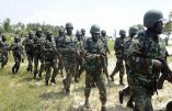 L'armée nigériane libère 400 otages de Boko Haram