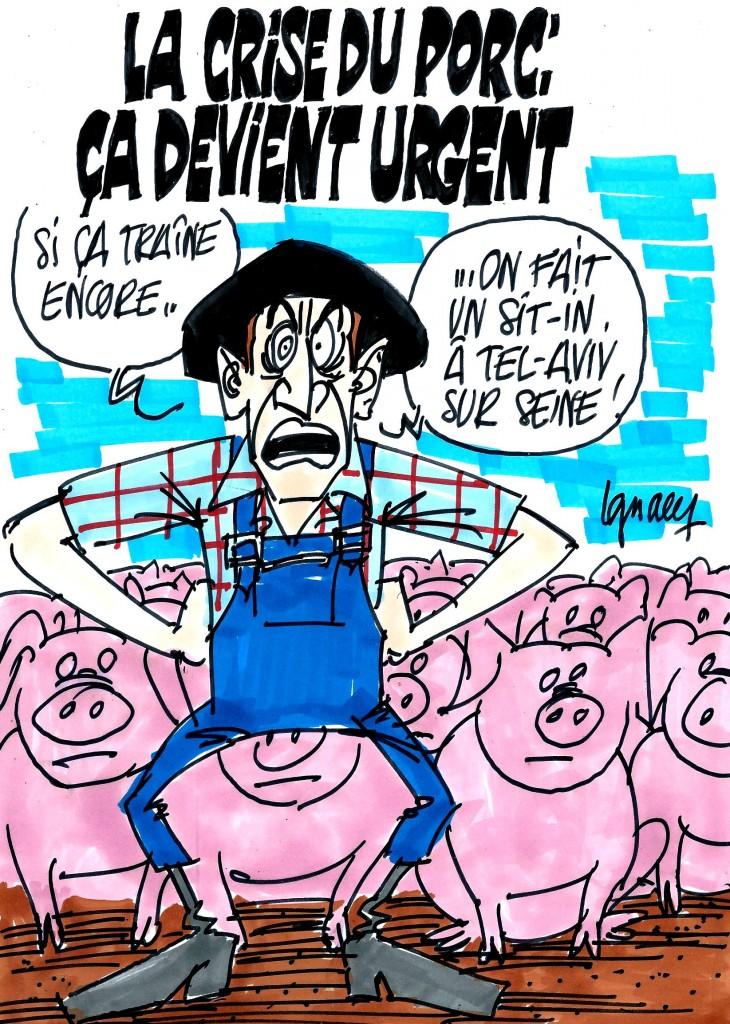 Ignace - Crise du porc : la colère monte