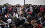 Italie – L'Italie prête à restaurer des contrôles draconiens à la frontière avec la Slovénie