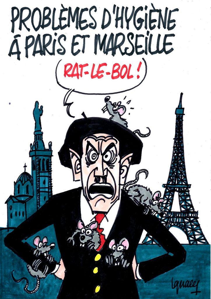 Ignace - Paris et Marseille envahis par les rats