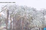 Neige dans le désert marocain! L'hiver n'a jamais été aussi rigoureux ni les taxes sur le réchauffement climatique… Vidéo