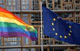 Hongrie – Projet constitutionnel contre la genderofolie : la mère est une femme, le père est un homme
