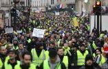 La justice française à la pointe de la haine du Français