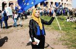 La future Europe échafaudée par les bien-pensants européistes