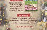 30 juin 2019 à Chaumont-en-Vexin : spectacle équestre médiéval