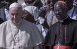 Le cardinal Sarah démissionne de la Congrégation du Culte Divin