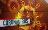 Coronavirus : le professeur Toussaint nie toute deuxième vague sur le plateau de Cnews