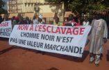 Au Mali, l'esclavage entre Noirs n'a jamais cessé – On en parle avec les Black Lives Matter ? (1)