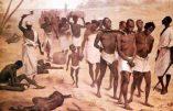 Eradiquer la haine, sortir l'Europe de la repentance et l'Afrique de l'infantilisme