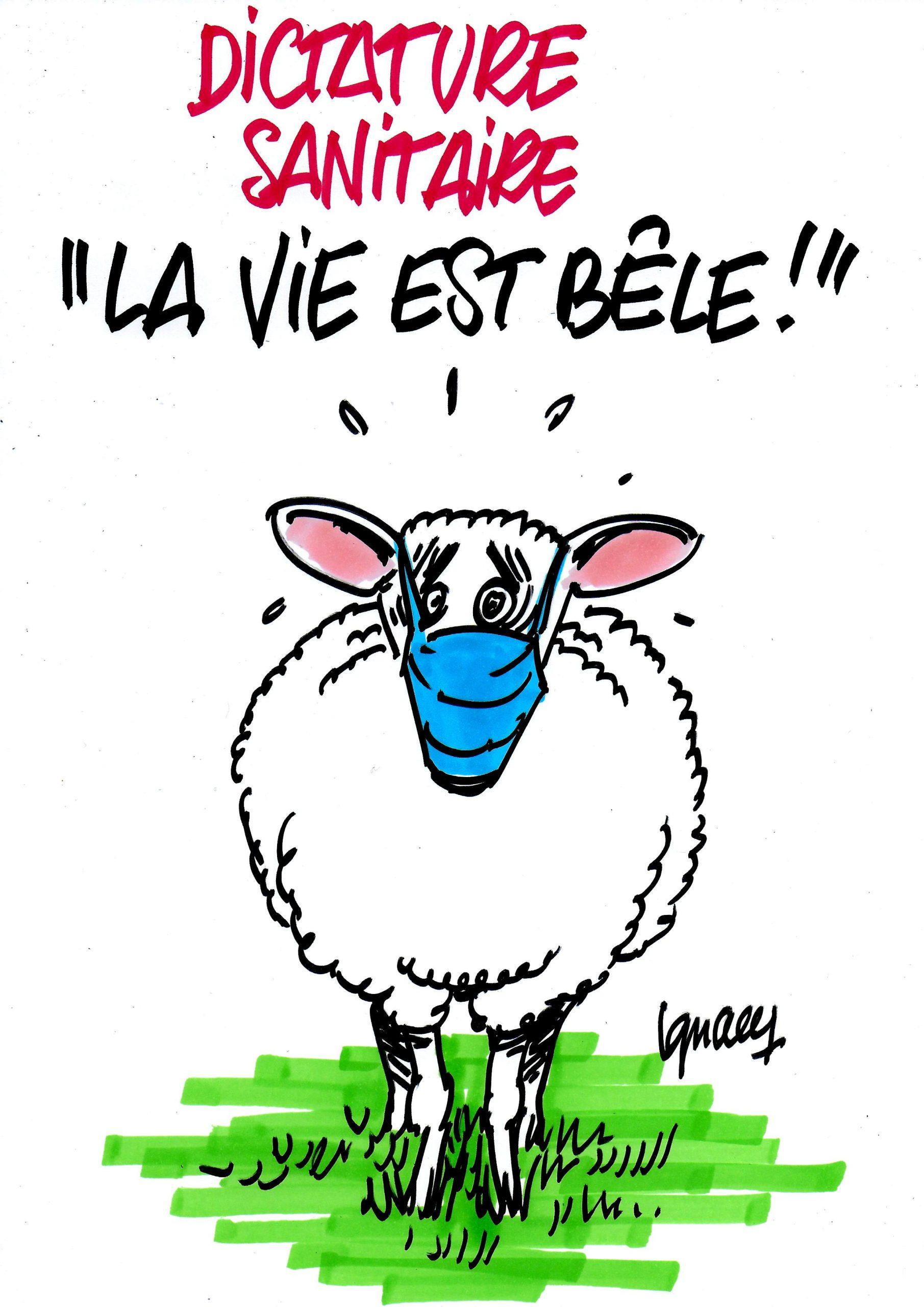 """Ignace - """"La vie est bêle !"""""""