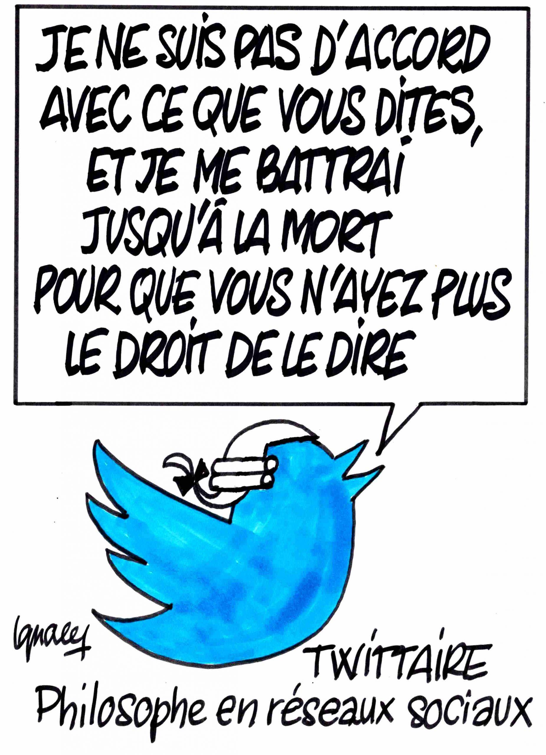 Ignace - Non d'oiseau